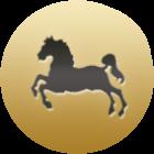 мужчина рожденный в год лошади под знаком девы