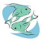 на сегодняшний день гороскоп рыбы